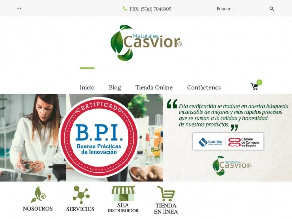 casvior.com